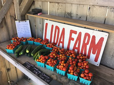 image of Lida Farm stand in Minnesota